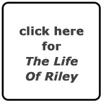 Jeffrey Frye's The Life of Riley