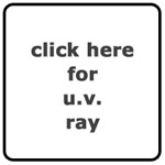 MSP Author: UV Ray
